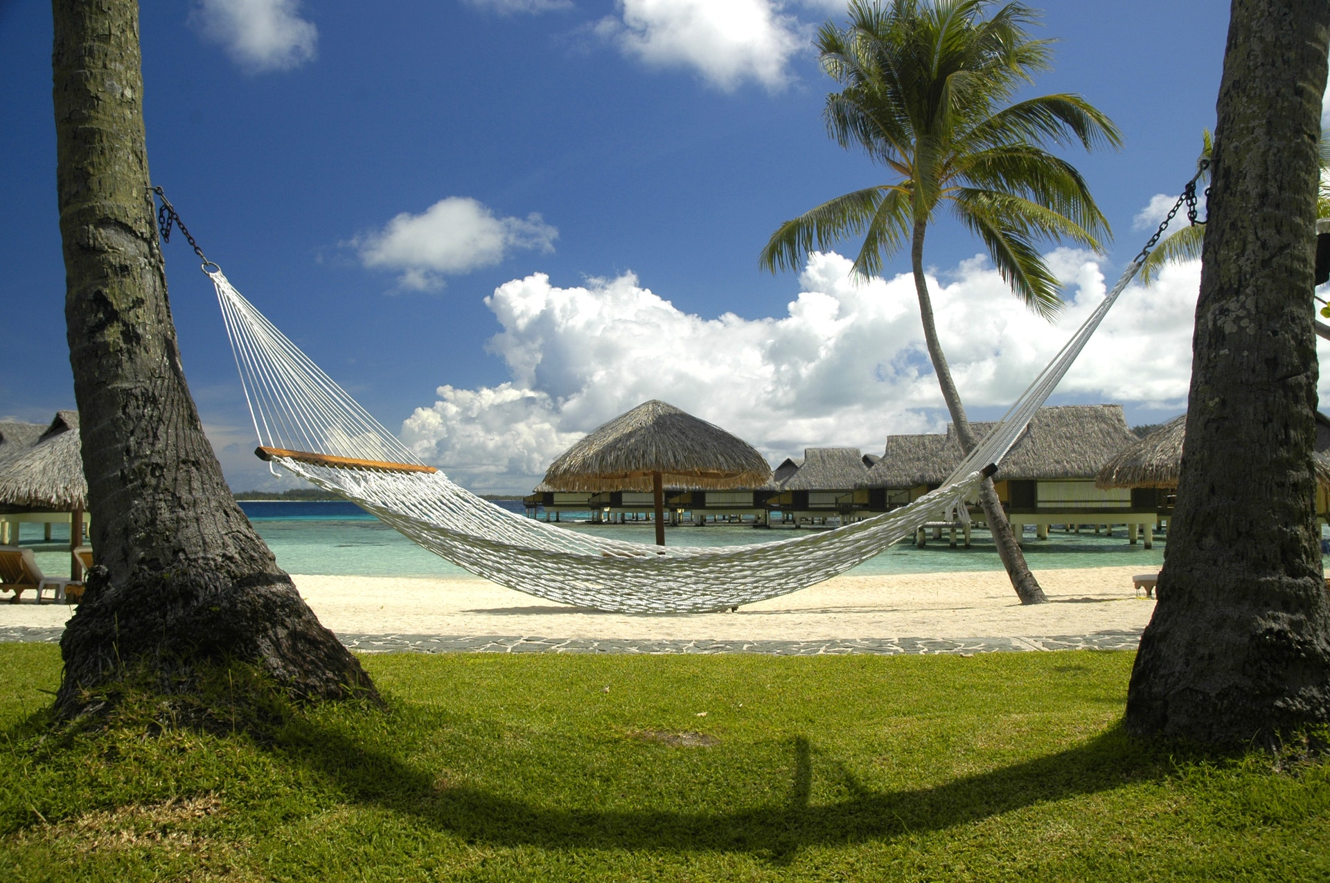 Why Buy A Hammock: Know The 10 Reasons